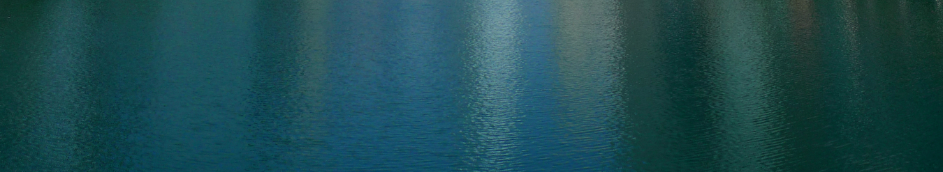image/Chicago River.png